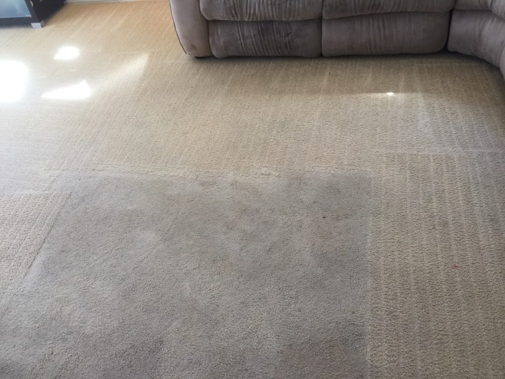 End of Lease Carpet Cleaning Gold Coast