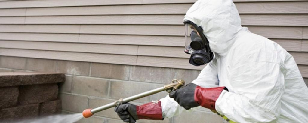 5 Pest Control Prevention Tips