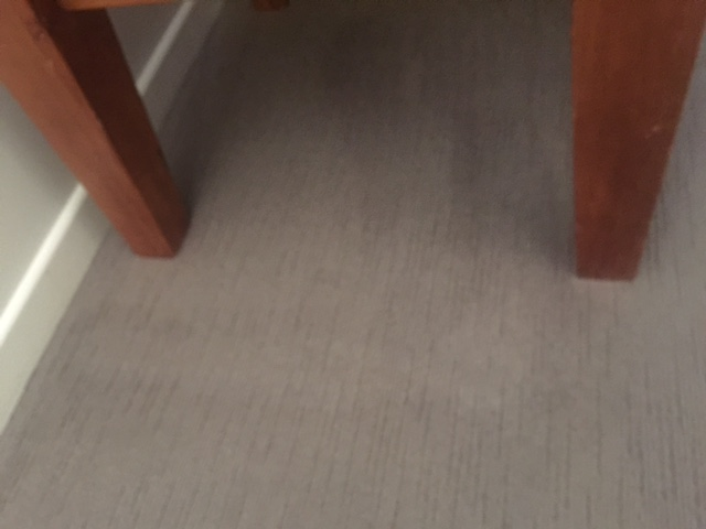After Carpet Cleaning Stain Removal Gold Coast