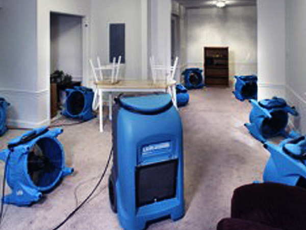 Floor Cleaning Gold Coast