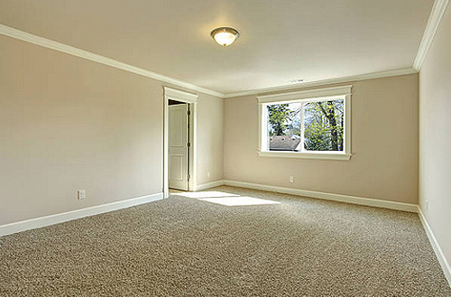 gold coast carpet steam cleaning