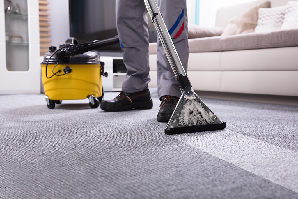 Professional carpet cleaning gold coast